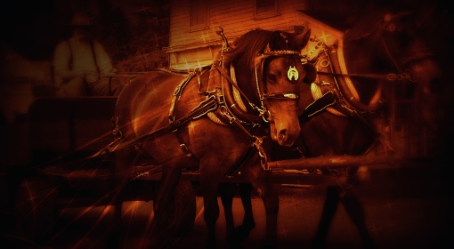 horses wagon